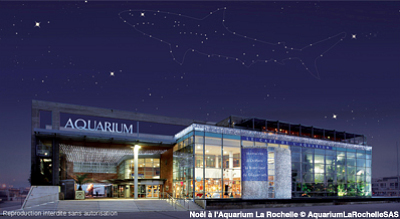 illustration de Noël 2012 : offrez la carte Grand Ami de l'Aquarium de La Rochelle