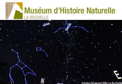 illustration de Muséum d'histoire naturelle de La Rochelle : ateliers et animations, vacances de printemps 2013