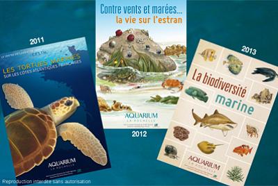 illustration de Tortues marines, estran, biodiversité : les livrets de l'Aquarium de La Rochelle