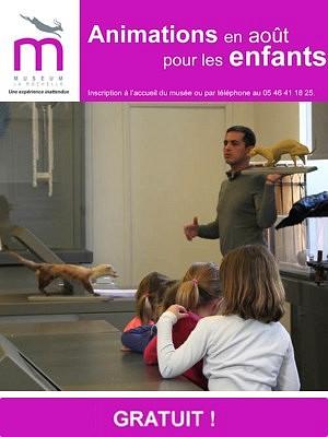 illustration de Muséum de La Rochelle : ateliers et découvertes pour les enfants au mois d'août 2014
