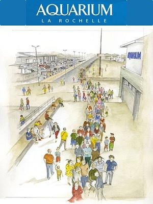 illustration de L'Aquarium de La Rochelle recrute ses saisonniers pour les mois de juillet et août 2015 !