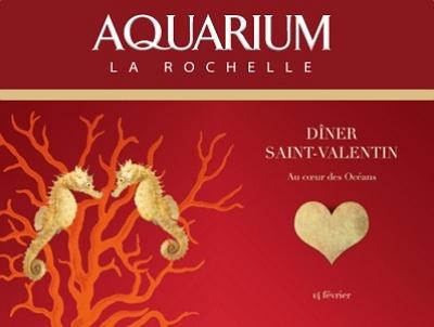illustration de Première à La Rochelle : la Saint-Valentin au coeur des océans à l'Aquarium, samedi 14 février