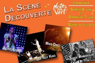 illustration de Agglo La Rochelle : scène découverte gratuite au festival Notes en Vert, samedi 6 et dimanche 7 juin 2015