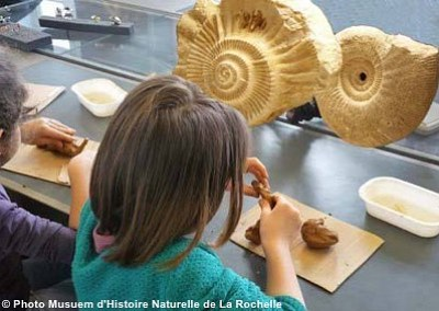 illustration de Avec des enfants au Muséum de La Rochelle : ateliers et visites pendant les vacances de la Toussaint 2015
