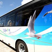 Photo  de photo : DR, Conseil général 17 - Transports Les Mouettes