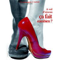 Photo  de �  Affiche : � vol d'oiseau, �a fait combien ?, cr�ation � L'Azile - La Rochelle mai 2012