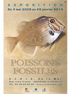Photo : Poissons fossiles : exposition à l'Aquarium de La Rochelle jusqu'en janvier 2010