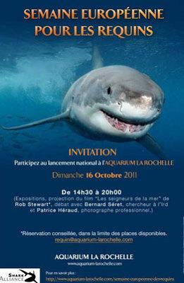 Photo : Aquarium de La Rochelle : semaine européenne pour les requins du 16 au 23 oct. 2011