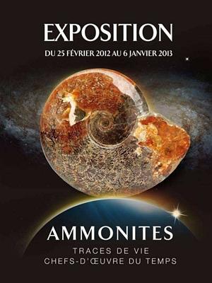 Photo : Aquarium de La Rochelle : ammonites, traces de vie, chefs-d'oeuvre du temps, exposition 2012
